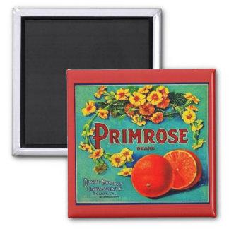 Vintage orange co. magnet