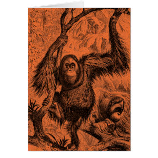 Vintage Orange Orangutan Illustration - Monkey Card