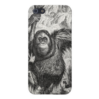 Vintage Orangutan Illustration - 1800's Monkey iPhone 5 Case