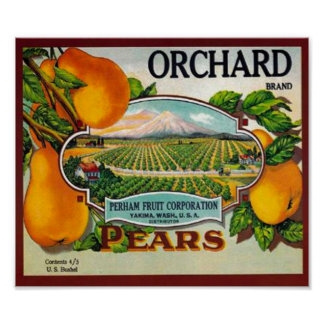 Vintage Orchard Pears Poster