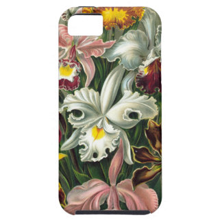 Vintage Orchids Illustration Case For The iPhone 5