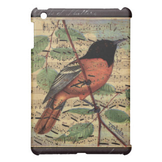 Vintage Oriole On  Music Case For The iPad Mini