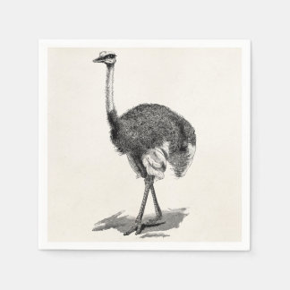 Vintage Ostrich Bird Antique Birds Template Disposable Napkin