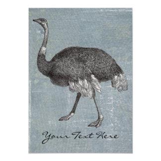 Vintage Ostrich Card