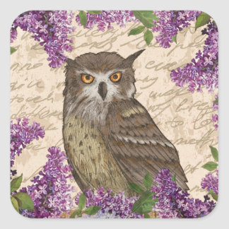 Vintage owl and lilac square sticker