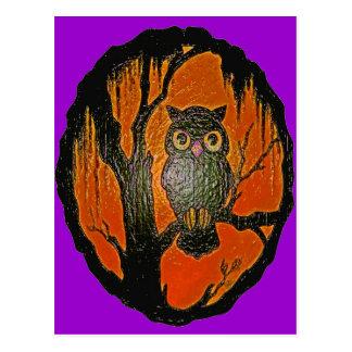 Vintage Owl cartoon Art Postcard