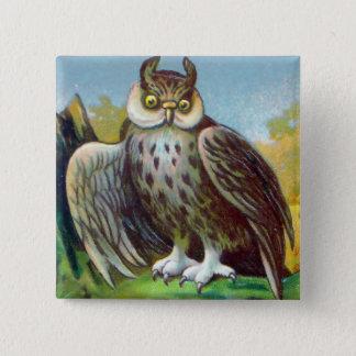 Vintage Owl Print 2 Inch Square Button