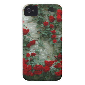 Vintage Painted Roses iPhone 4 Cases