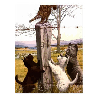 vintage painted terriers with bobcat postcard