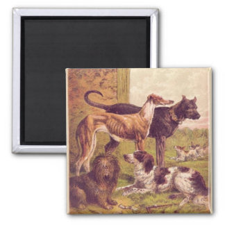 Vintage Painting of Dog Group Magnet