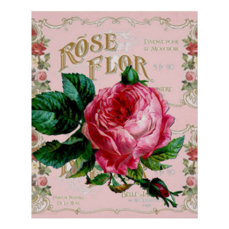 Vintage Paris Pink Rose Fashion, pretty floral art Poster