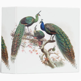 Vintage Peacock Birds Wildlife Animals Binder