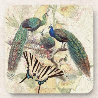 Vintage Peacock Birds Wildlife Butterfly Coaster