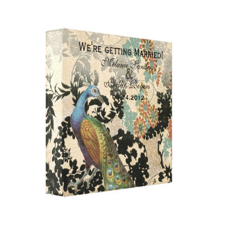 Vintage Peacock Canvas Print