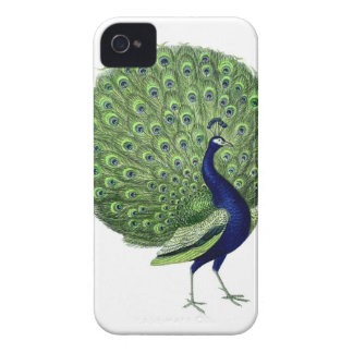 Vintage Peacock Case-Mate iPhone 4 Cases