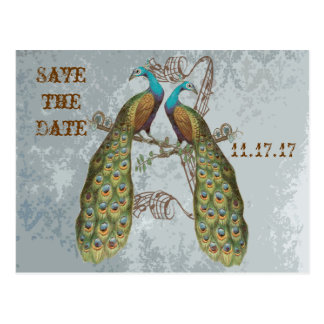 Vintage Peacock Damask Save the Date Postcard