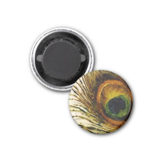Vintage Peacock Feather Fridge Magnet