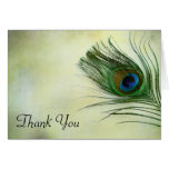 Vintage Peacock Feather Thank You Stationery Note Card