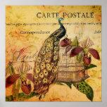 vintage peacock floral paris fashion poster
