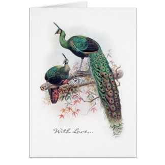 Vintage Peacock Notecard