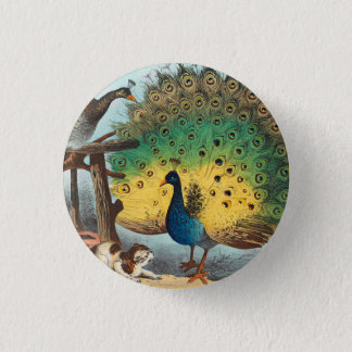 Vintage peacocks and a cat 1 inch round button