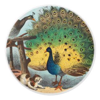 Vintage peacocks and a cat ceramic knob