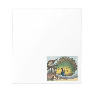 Vintage peacocks and a cat notepad