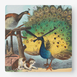 Vintage peacocks and a cat wall clocks