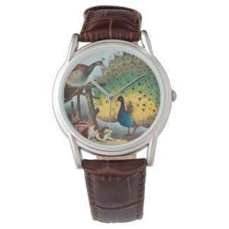 Vintage peacocks and a cat watch