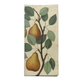 Vintage Pear Botanical Fruit Illustration Napkin