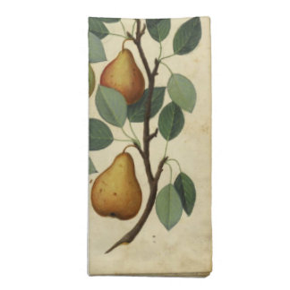 Vintage Pear Napkins Botanical Fruit illustration