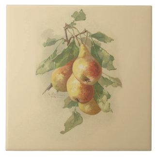 Vintage pears tile