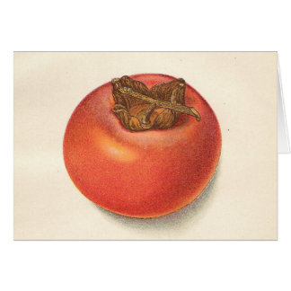 Vintage Persimmon Greeting Card