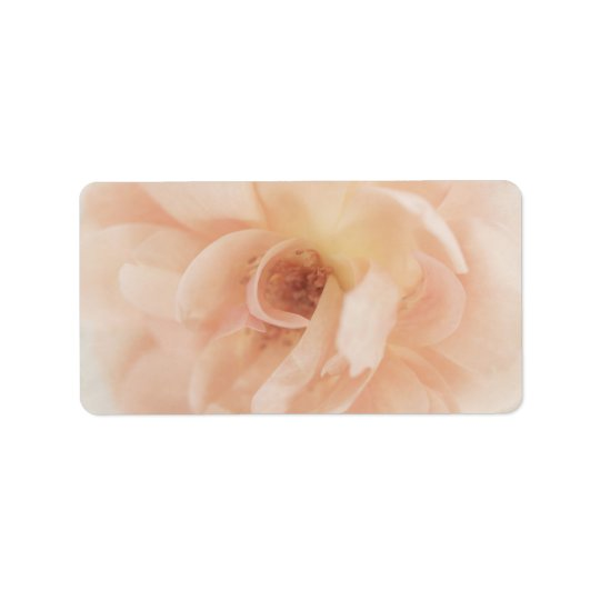 Vintage Personalized Peach Pink Garden Rose Flower Label