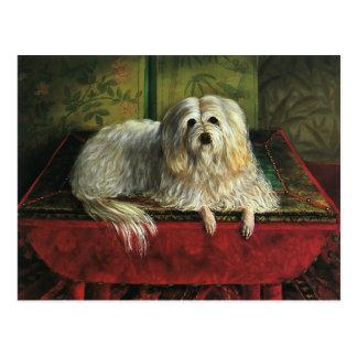 Vintage Pet Animals, Shaggy Sheepdog Dog Postcard