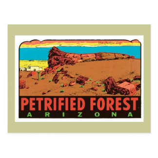 Vintage Petrified Forest Arizona AZ State Label Postcard
