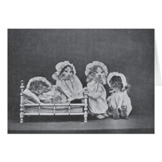 Vintage Photo - Bedtime for Four Kittens, Card