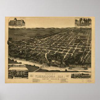 Vintage Pictorial Map of Tuscaloosa Alabama (1887) Poster