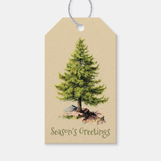 Vintage Pine Tree Season's Greetings Christmas Gift Tags