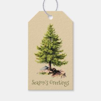Vintage Pine Tree Season's Greetings Christmas Pack Of Gift Tags
