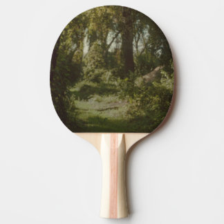 Vintage Ping Pong Paddle