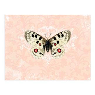 Vintage Pink Butterfly Damask Postcard