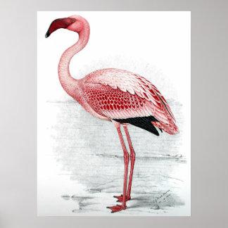 Vintage Pink Flamingo Painting Poster