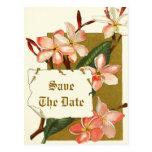 Vintage pink flowers wedding Save the Date Postcard