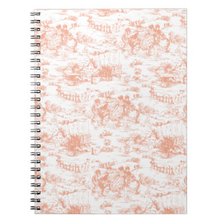 Vintage Pink French Toile Notebooks
