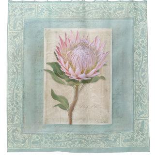 Vintage Pink King Protea Flower Blue Elegant Chic