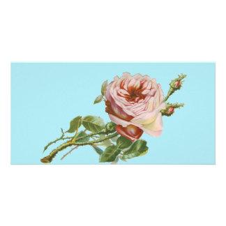 Vintage Pink Rose on Pale Aqua Customized Photo Card