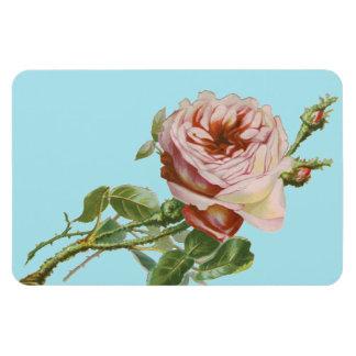 Vintage Pink Rose on Pale Aqua Rectangular Photo Magnet