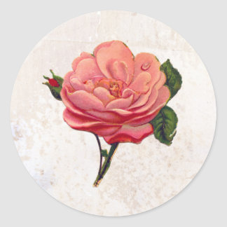 Vintage Pink Rose Shabby Chic Print Classic Round Sticker