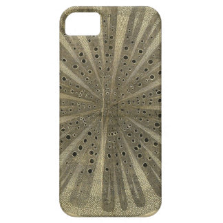 Vintage Plant Anatomy Case For The iPhone 5